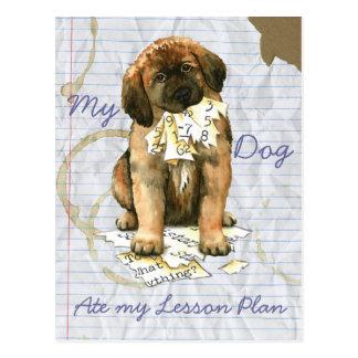 My Leonberger Ate My Lesson Plan Postcard