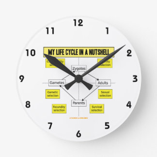 My Life Cycle In A Nutshell (Biological Attitude) Round Clock