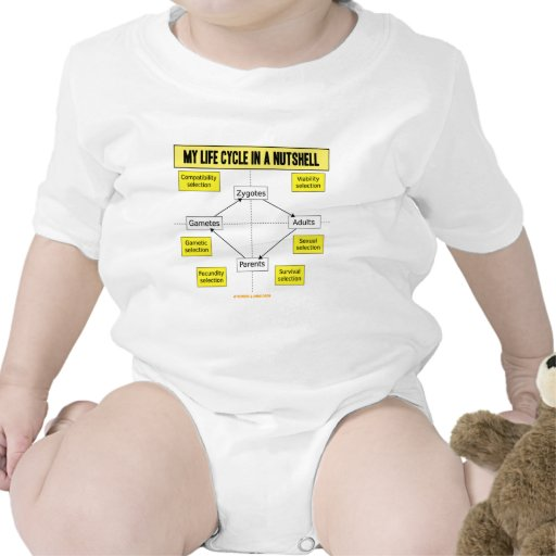 My Life Cycle In A Nutshell (Biological Attitude) Baby Bodysuits