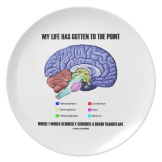My Life Gotten To Point Consider Brain Transplant Melamine Plate