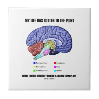 My Life Gotten To Point Consider Brain Transplant Ceramic Tile
