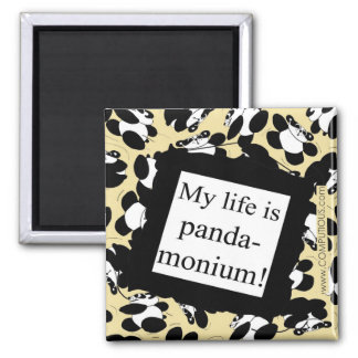 My life is panda-monium magnets