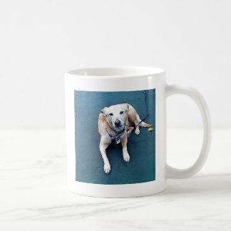 My Lilly Coffee Mug
