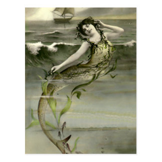 My Little Mermaid Postcard