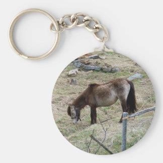 My Little Pony Key Chain