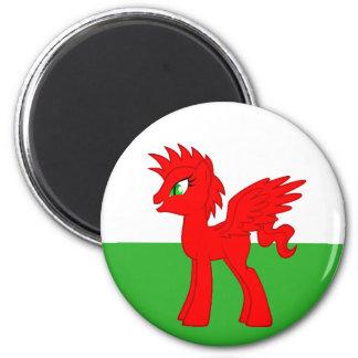 My Little Welsh Magnet