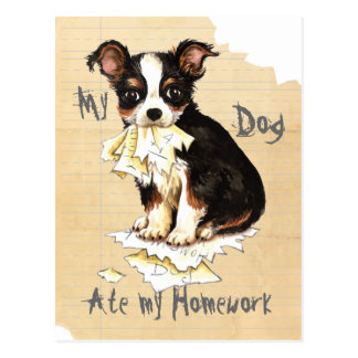 My Long Coat Chihuahua Ate My Homework Postcard