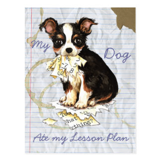 My Long Coat Chihuahua Ate My Lesson Plan Postcards