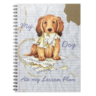 My Longhaired Dachshund Ate my Lesson Plan Notebook