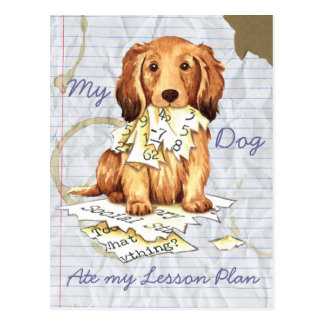 My Longhaired Dachshund Ate my Lesson Plan Postcard