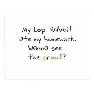 My lop rabbit ate my homework. Wanna see proof? Postcard