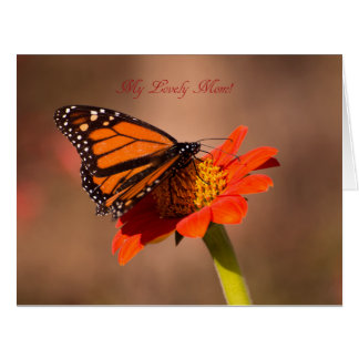 My lovely Mom, Monarch butterfly