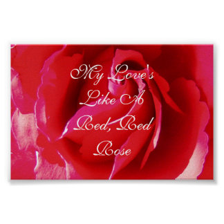 My Love's Like a Red Red Rose Poster