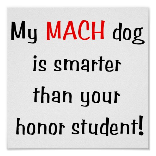 My MACH Dog is Smarter... Posters