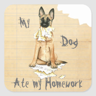 My Malinois Ate My Homework Square Sticker