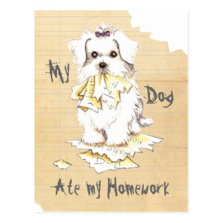 My Maltese Ate My Homework Postcards