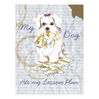 My Maltese Ate My Lesson Plan Post Cards