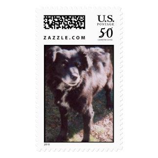 My Maxie Postage