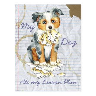 My Mini American Shepherd Ate My Lesson Plan Postcard