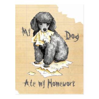 My Miniature Poodle Ate My Homework Postcard
