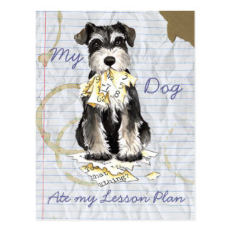 My Miniature Schnauzer Ate My Lesson Plan Post Card
