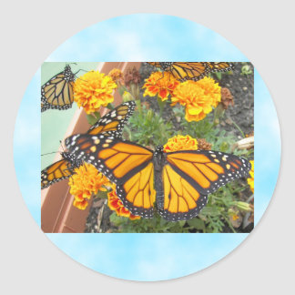 My Monarch Butterflies-sticker