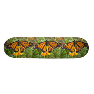 My Monarch Butterfly-skateboard Skateboard