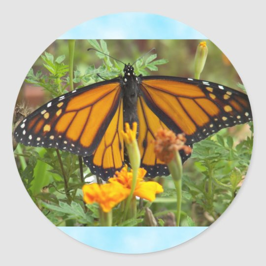 My Monarch Butterfly-sticker Classic Round Sticker