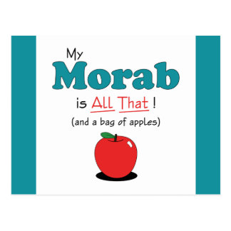 My Morab is All That! Funny Horse Postcard