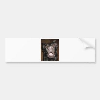my name is dog bumper sticker