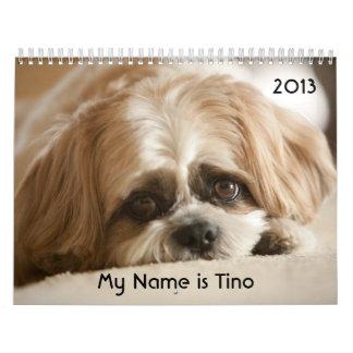 My Name is Tino 2013 Calendar