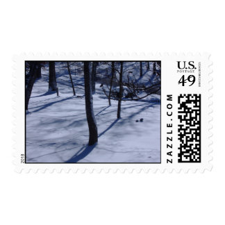 My Neck of the Woods Postage