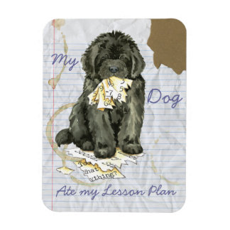 My Newfoundland Ate my Lesson Plan Magnet