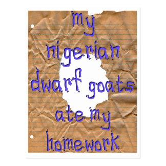 My Nigerian Dwarf Goats Ate My Homework Postcard