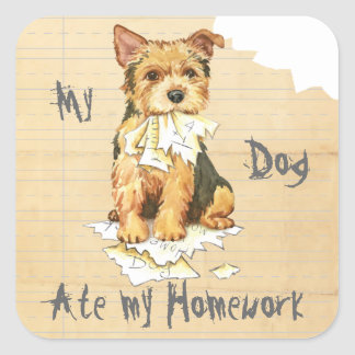 My Norwich Terrier Ate my Homework Square Sticker