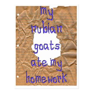 My Nubian Goats Ate My Homework Postcard