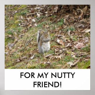 MY NUTTY FRIEND POSTER