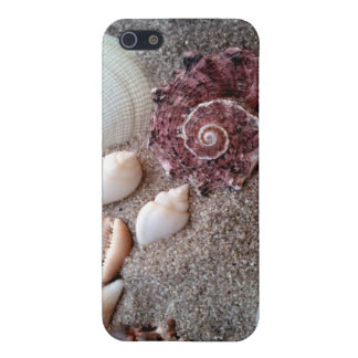 My Own Private Beach Cover For iPhone SE/5/5s