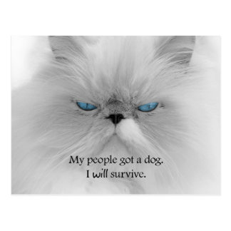 My People Got a Dog. I Will Survive. Postcard