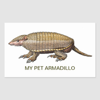My Pet Armadillo - Cute Cuddly - YES Rectangular Stickers