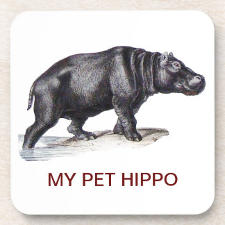 MY PET HIPPO COASTER