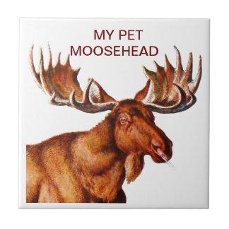 MY PET MOOSEHEAD TILE