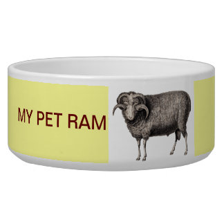 MY PET RAM BOWL