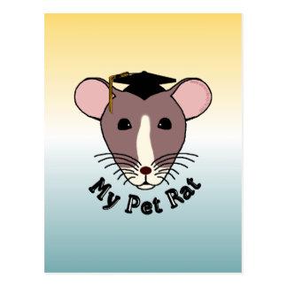 My Pet Rat (Graduate) Post Card