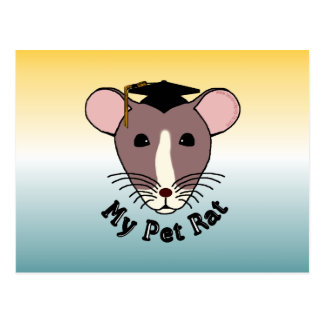 My Pet Rat (Graduate) Postcard