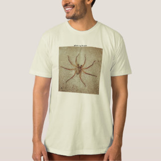 my photo of the spider T-Shirt