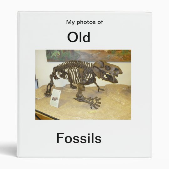 My Photos of Old Fossils Avery Binder