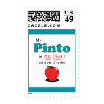My Pinto is All That! Funny Horse Postage