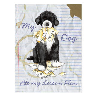 My Portuguese Water Dog Ate My Lesson Plan Postcard