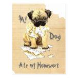 My Pug Ate My Homework Postcard